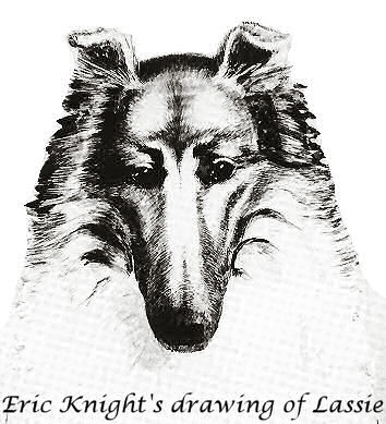 Eric Knight's Drawing of Lassie