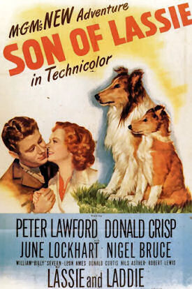 Son of Lassie poster